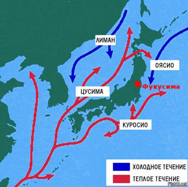 Как деградирует Япония