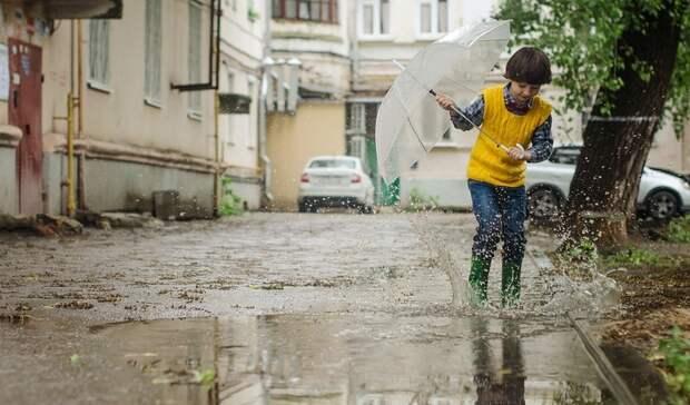 ВРостовской области ожидаются дожди итёплая погода