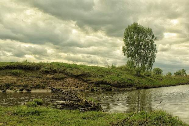 Природа России 46
