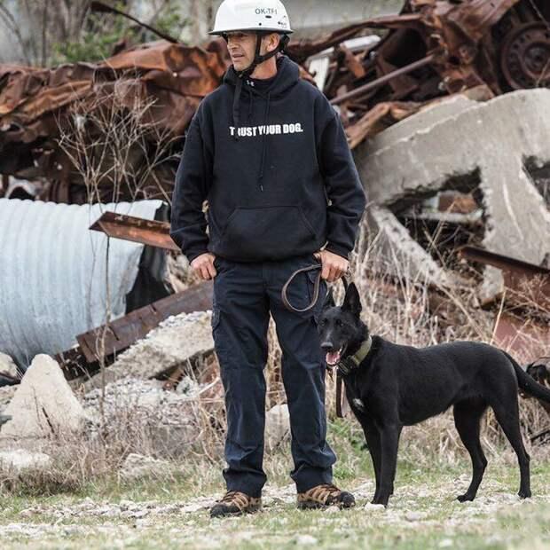 Несколько лет назад на офицера Тодда Фрейзера из Миссисипи напали три члена банды, которые заманили его в ловушку животные, истории, нападение, собака, собаки, спасение, трогательно, фото
