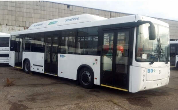 Мэрия Новосибирска определила маршруты для 14 новых автобусов НефАЗ
