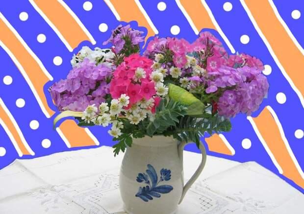 Секреты флориста: как вырастить цветы для срезки