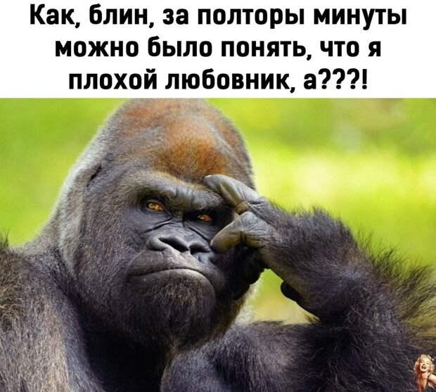 """Усветофора останавливается 600-тый """"мерин"""", а рядом - запорожец..."""