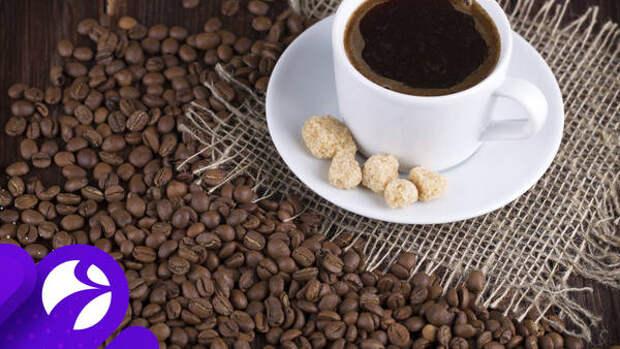 Истина в зерне: разработан способ определить подлинность кофе