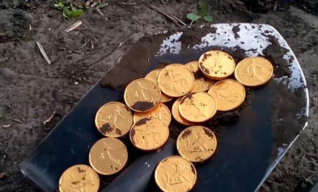 Золото в лесу: внезапная удача черного археолога