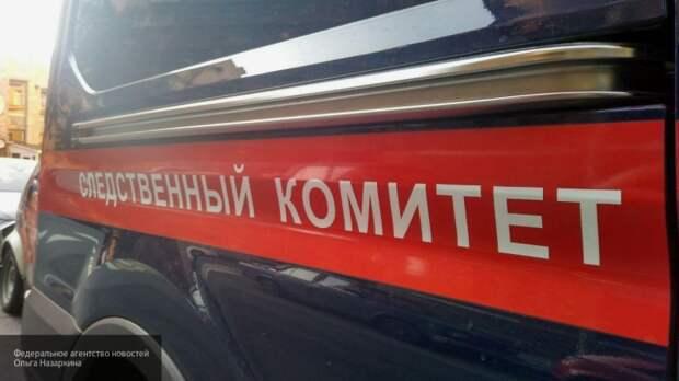 Участники скрылись, мобильные отключены: в СК рассказали новые подробности драки в Ельце