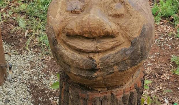 Ой, мамочки! Жители Ростошей удивлены странными деревянными фигурами впарке «Ивушка»