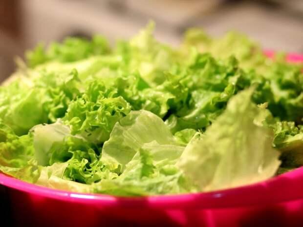 zelena-salata-ljekovita-svojstva-1200x900