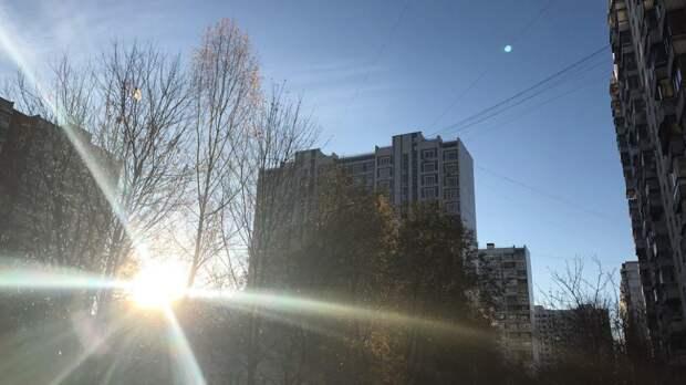 Жара до 31 градуса тепла ожидает жителей московского региона в ближайшие дни
