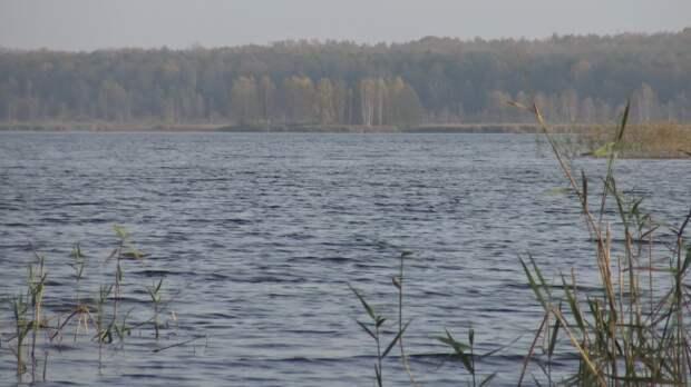 Слив нефтепродуктов в водохранилище ликвидируют в Тульской области