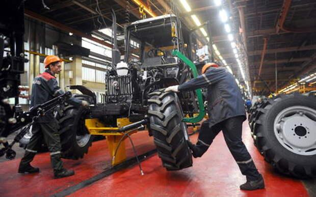 Тракторы «Беларус» будут собирать туристы (и платить за это)