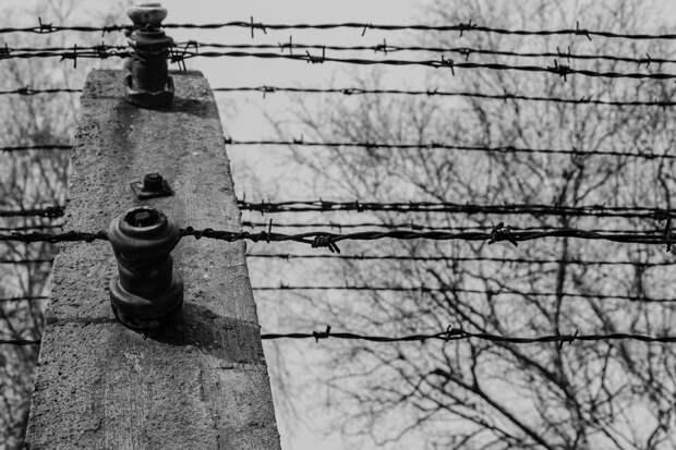 РВИО раскрыло страшный секрет о Польше