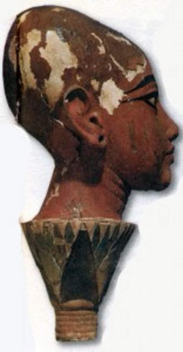 Голова Тутанхамона, выступающая из бутона лотоса