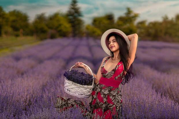 Обои Девушка Эмилия с корзиной цветов на лавандовом поле, фотограф ...