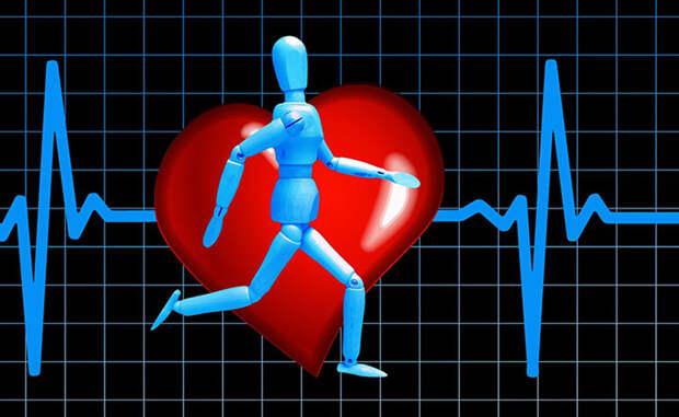 Как сохранить сердце здоровым до старости