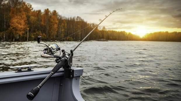 Тело рыбака нашли в пруду в Балашовском районе