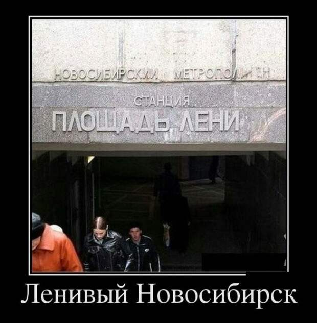 1452591303_demki-9