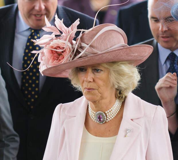 Супруга принца Чарльза затаила обиду на его сына и невестку