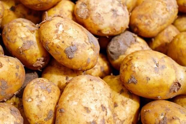 Продукты, накапливающие жир на животе: как привести себя в форму после праздников?