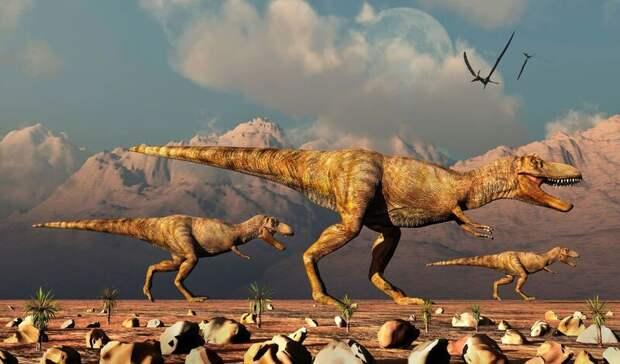 Палеонтологи: тираннозавры охотились стаями, как волки