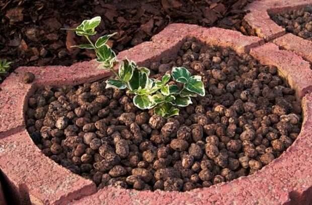 САД, ЦВЕТНИК И ОГОРОД. Лучшие материалы для зимнего укрытия растений