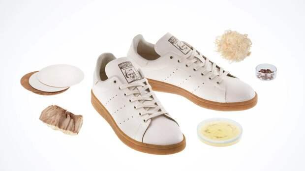 Adidas анонсировал выпуск кроссовок из «грибной кожи»