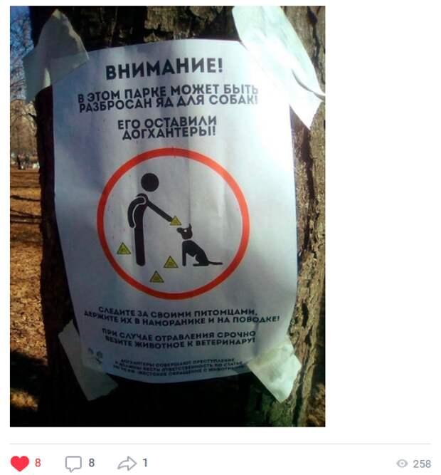 В парке «Яуза» участились случаи отравления собак
