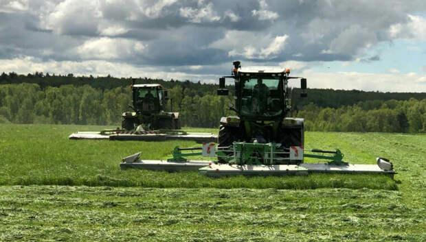 Заготовка кормов для скота началась в Подмосковье