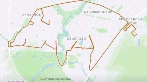 Москвич рисует на картах животных с помощью GPS-трекера