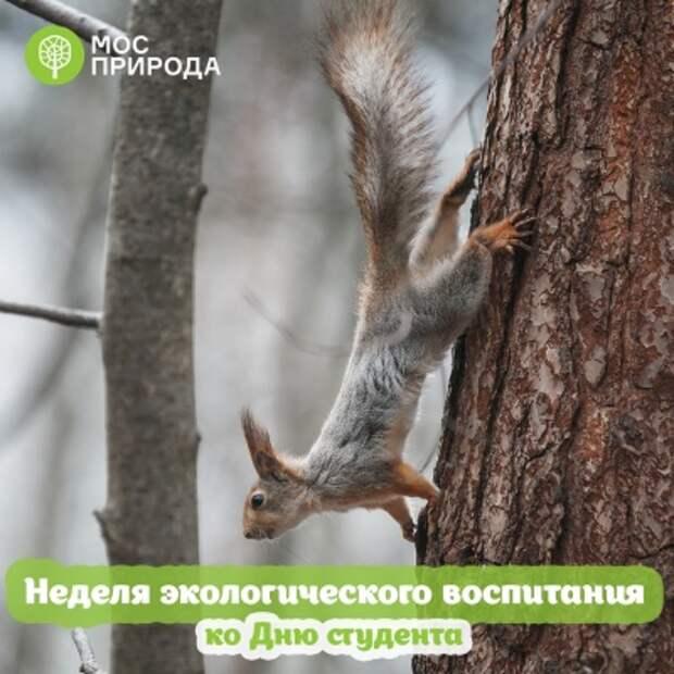 В парке «Тушинский» пройдёт неделя экологического просвещения