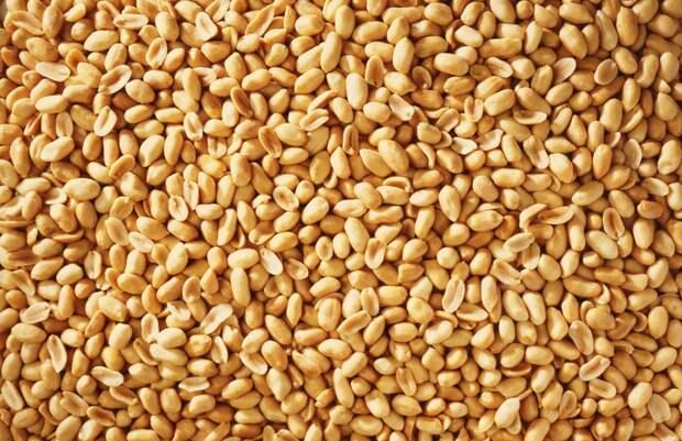 Фото №1 - Арахис: польза и вред самых популярных в мире орехов