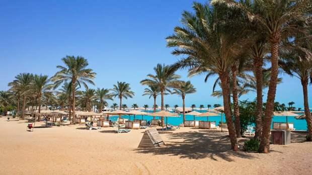 В РСТ рассказали о ситуации с полётами на курорты Египта