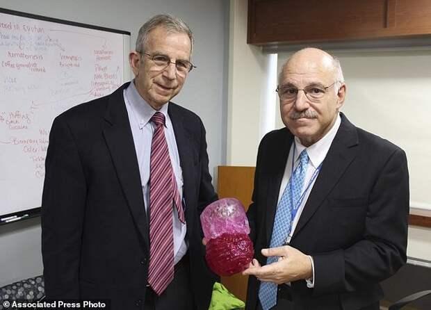 Врачи Дэвид Хоффман (слева) и Армен Касабьян показывают 3D-модель опухоли и реальную опухоль (она темно-красного цвета) врачи, операция, опухоль
