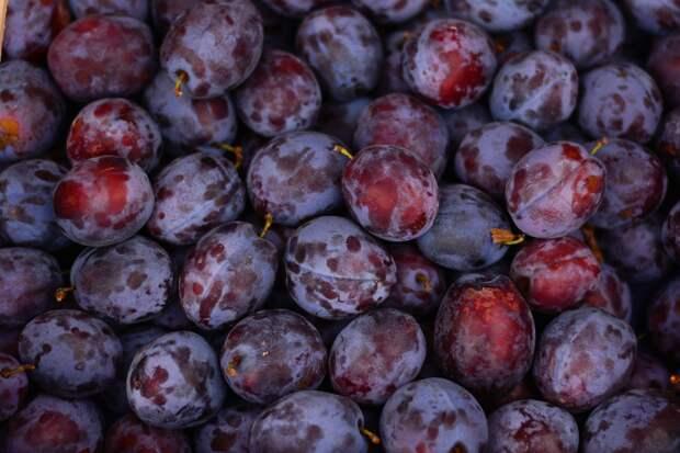 В рязанском Роспотребнадзоре рассказали, какие фрукты нужно есть осенью