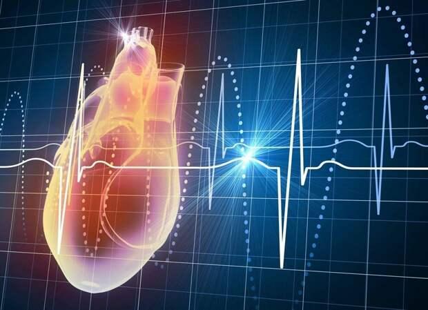 Учёные МГУ описали синдром постковидной тахикардии