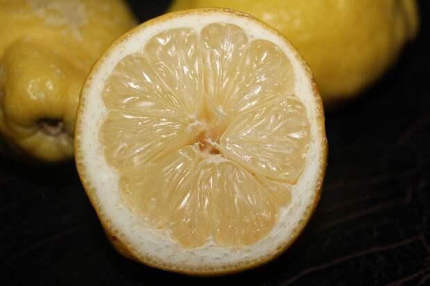 чай нужно пить с лимоном