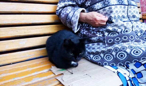 Была впижаме итапочках. Пропавшую омскую пенсионерку нашли внеожиданном месте