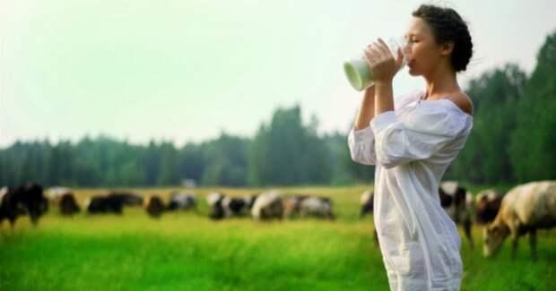 Ученые определили опасную для человека дозу молочных продуктов