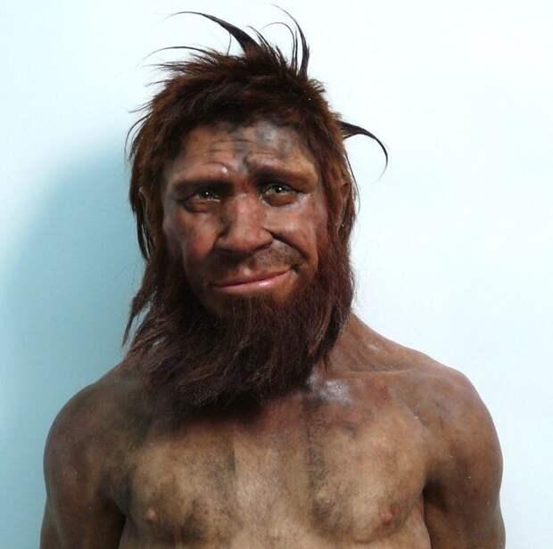 Реконструированный образ неандертальца (35000 г. до н.э.)