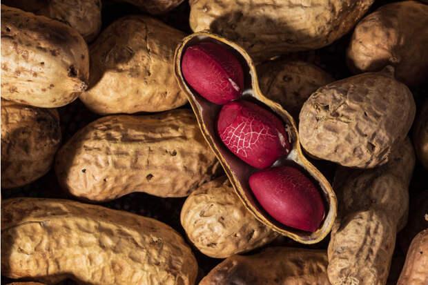 Фото №2 - Арахис: польза и вред самых популярных в мире орехов