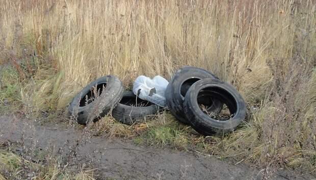 Неизвестные выбросили на пустыре в Подольске использованные автопокрышки