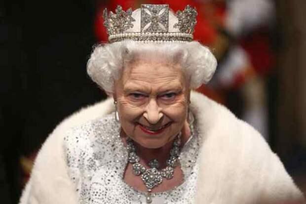 Двойной удар по королеве: внезапно на радугу ушел щенок Фергус
