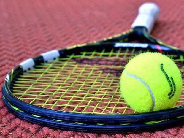 «Жирная свинья»: в Москве тренер обругала, а потом избила 18-летнюю теннисистку