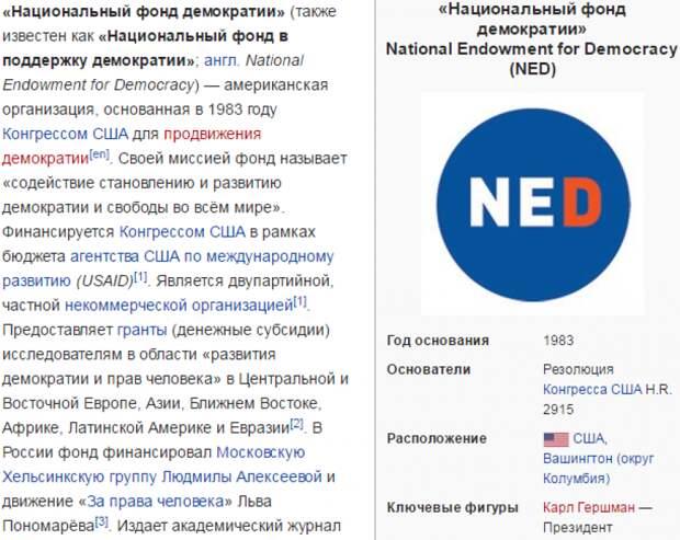«КиберБеркут»: расследования Навального заказывал Госдеп