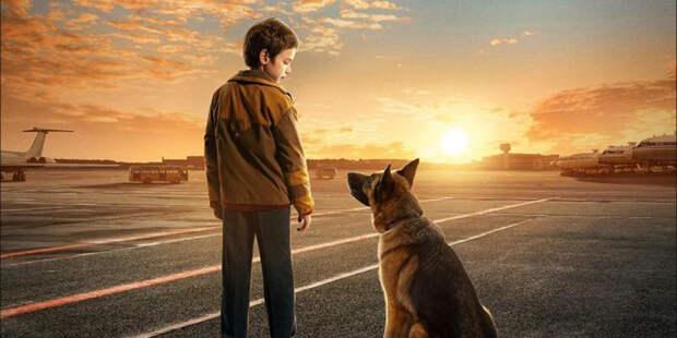 Показ двух фильмов пройдёт в Щукине 28 августа