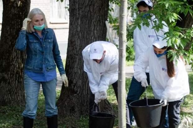 Депутат ГД Ирина Белых: В Москве должны появиться миллионы деревьев
