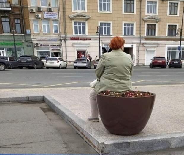 «Так вот, кто все кашпо треснул»: фото изцентра Владивостока взрывает соцсети