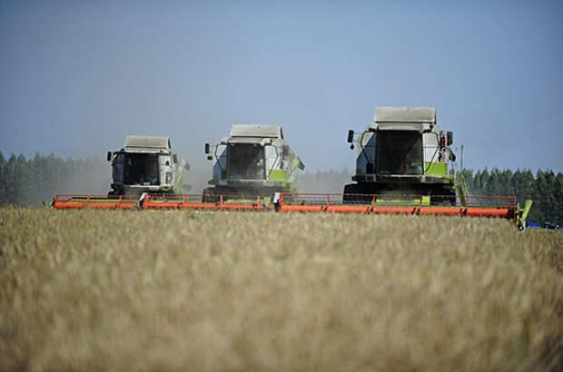 Германия предлагает России вместе развивать рынок «зелёной продукции»