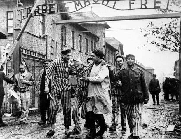 «Зер гут, Вольдемар». В аду палачи Освенцима рукоплещут Зеленскому