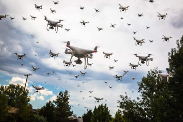 Рой крылатых роботов: в каком направлении движется армия США.